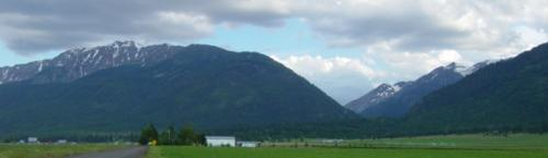 A view of the beautiful Eagle Cap Mountains through our field!