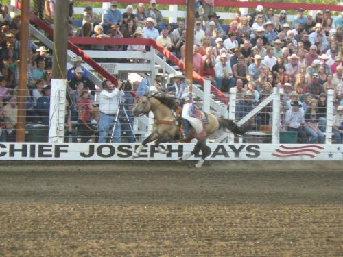 Ms. Rodeo Oregon, Mackenzie Carr at Chief Joseph Days (2011) riding Chex BEFORE she was crowned Ms. Rodeo America in Vegas in December 2011.  Mackenzie took several lessons while staying at our Ranch.